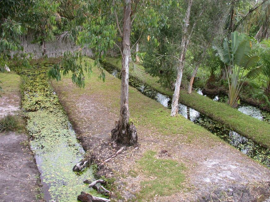 jardin à l'arrière et canaux