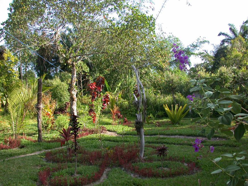 Le jardin en novembre 2007