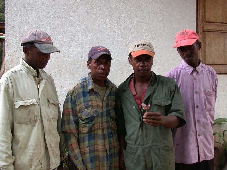 Les ouvriers du Feon'ny Ala avec un Lepista