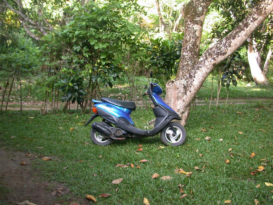 scooter bleu chez Véro