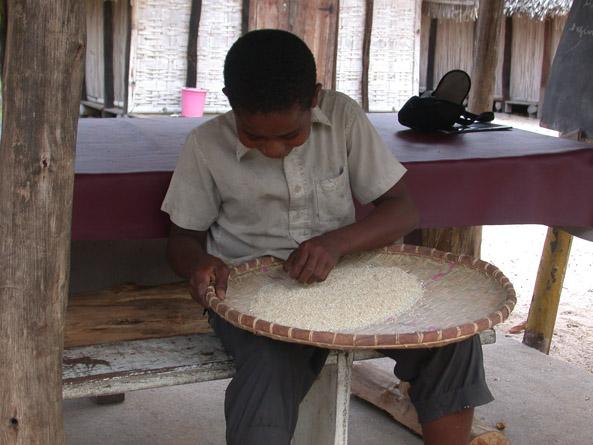 Tri du riz
